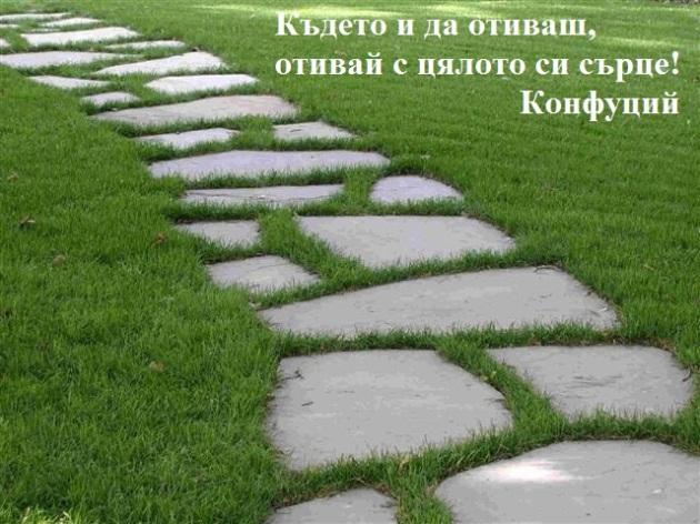 kamenna-pytechka
